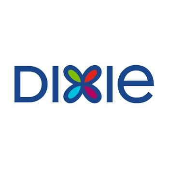 Dixie everyday plates with 10%